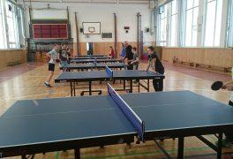 Ping-pong ve ŠSK